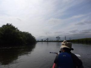 grace-field-side-widget-canoegarally
