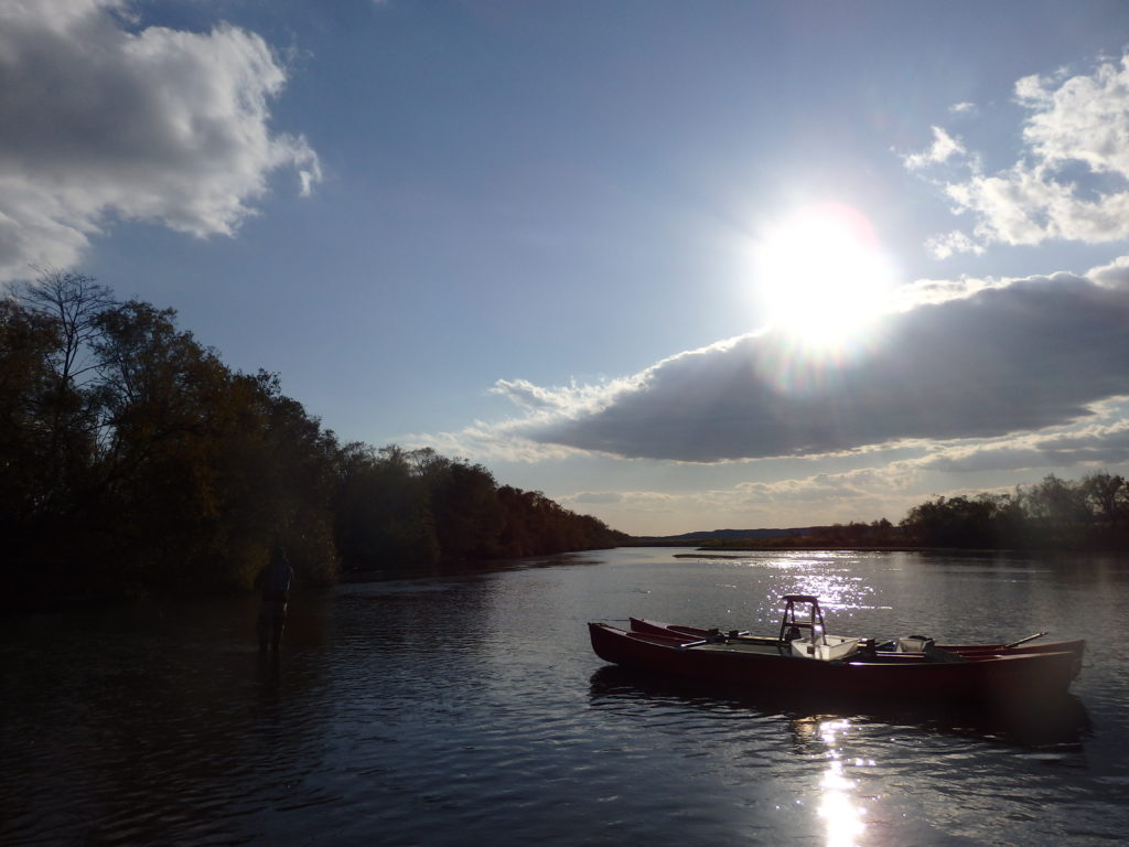 grace-field-side-widget-canoe